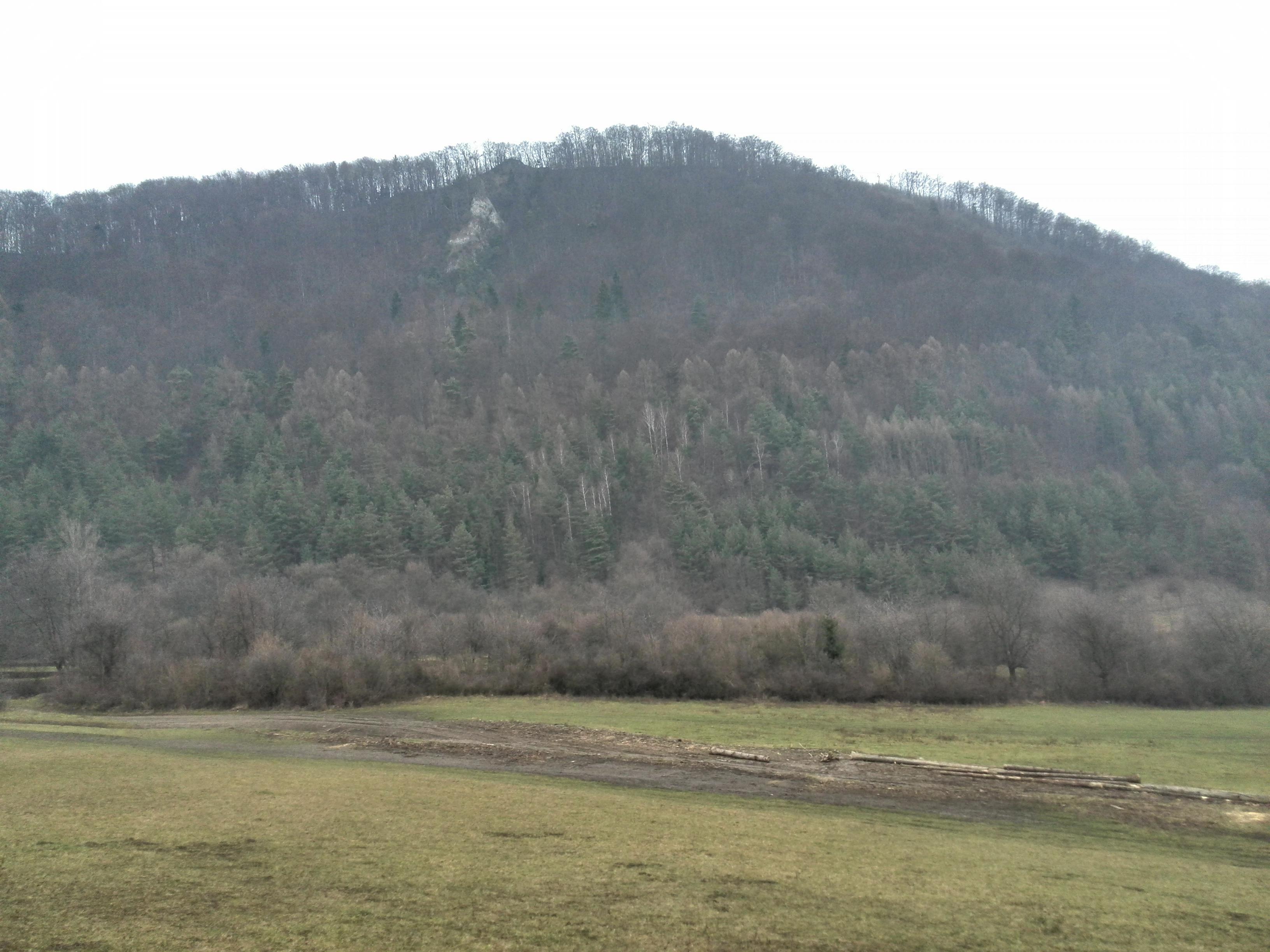 Rochovica
